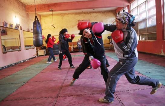 5.afgan boksör
