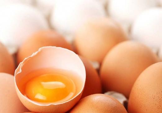 Sporcuların vaz geçemediği besin; yüksek protein kaynağı yumurtadır.