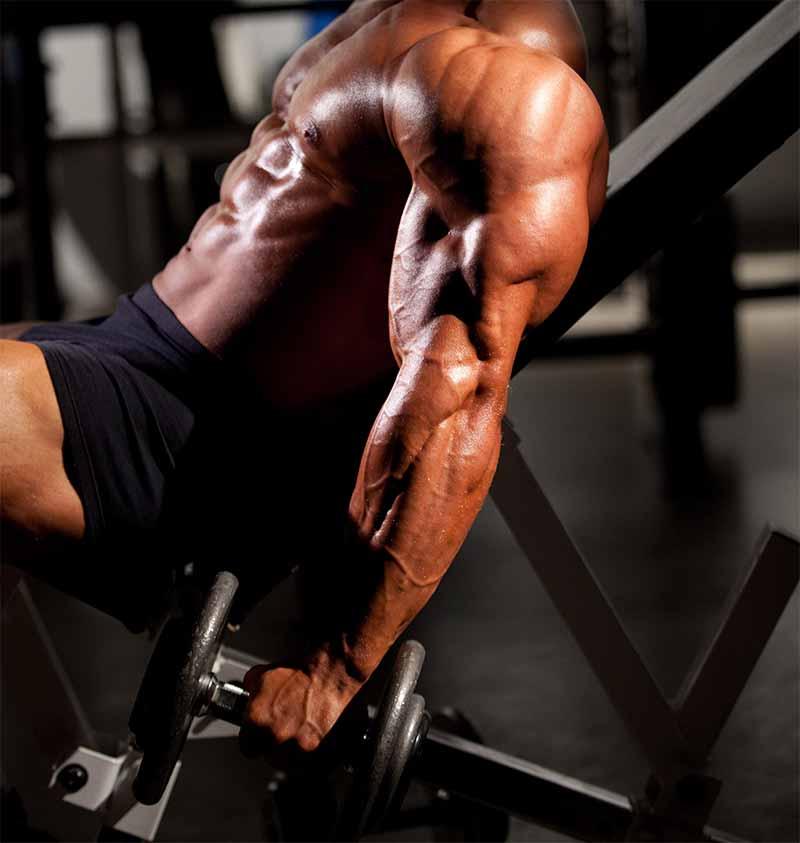 negative-curl-biceps