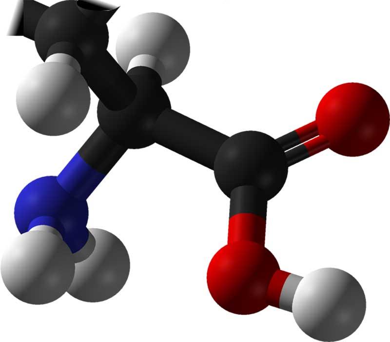 amino-asit