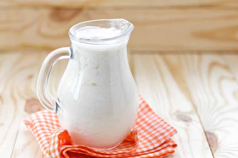 Karışıma kefir eklemeyi unutmayın çünkü, hem smoothie'yi krema kıvamına getirmek ve sağlık açısından çok önemlidir.