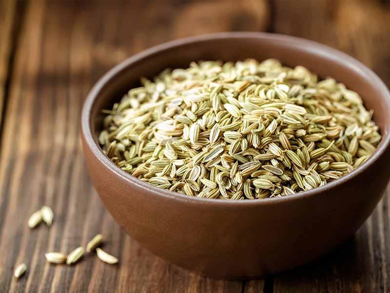 Rezene tohumunun doğal antibiyotik özelliği bütün organlar için faydalıdır.