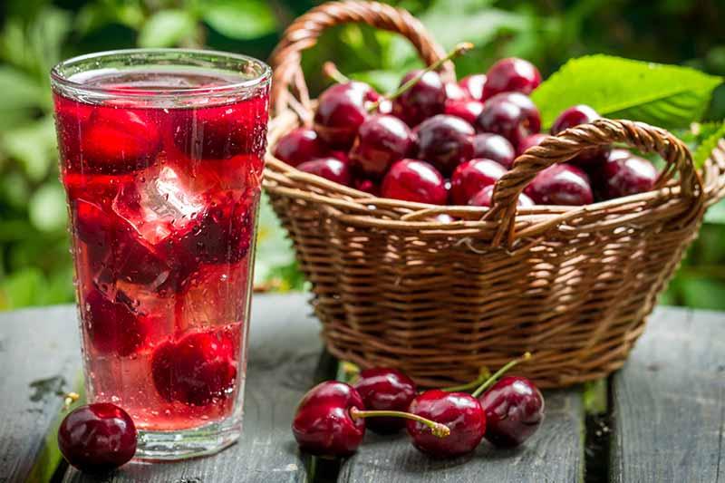 Vişne suyu antioksidan açısından oldukça zengindir.
