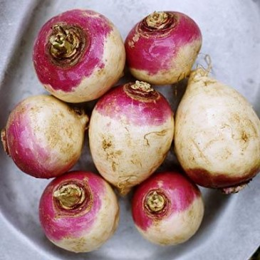 3fall-foods-rutabagas-400x400