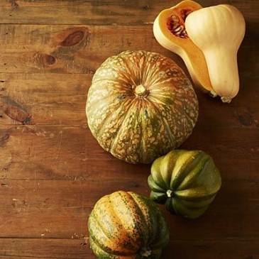 6fall-foods-brussels-squash-400x400