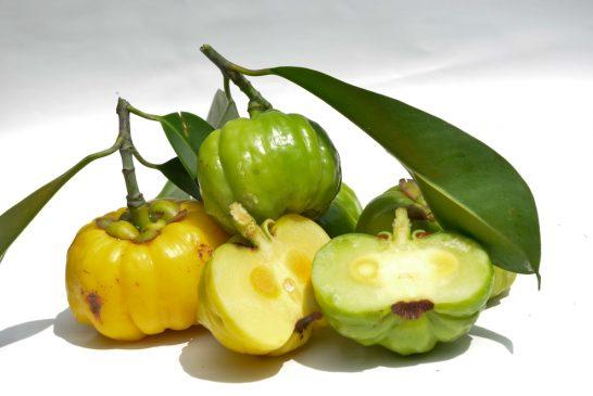 Garcinia Cambogia Yağ Yakımı İçin Önemli Bir Takviye Mi?